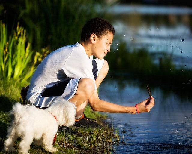 Crédits photos : flickr.com / Ann Gordon