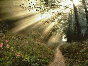 Crédits photo : oraney.blogspot.com