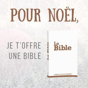 Offre une Bible pour Noël