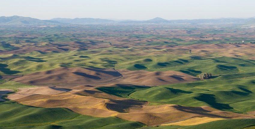 L'écologie, un moyen de glorifier Dieu