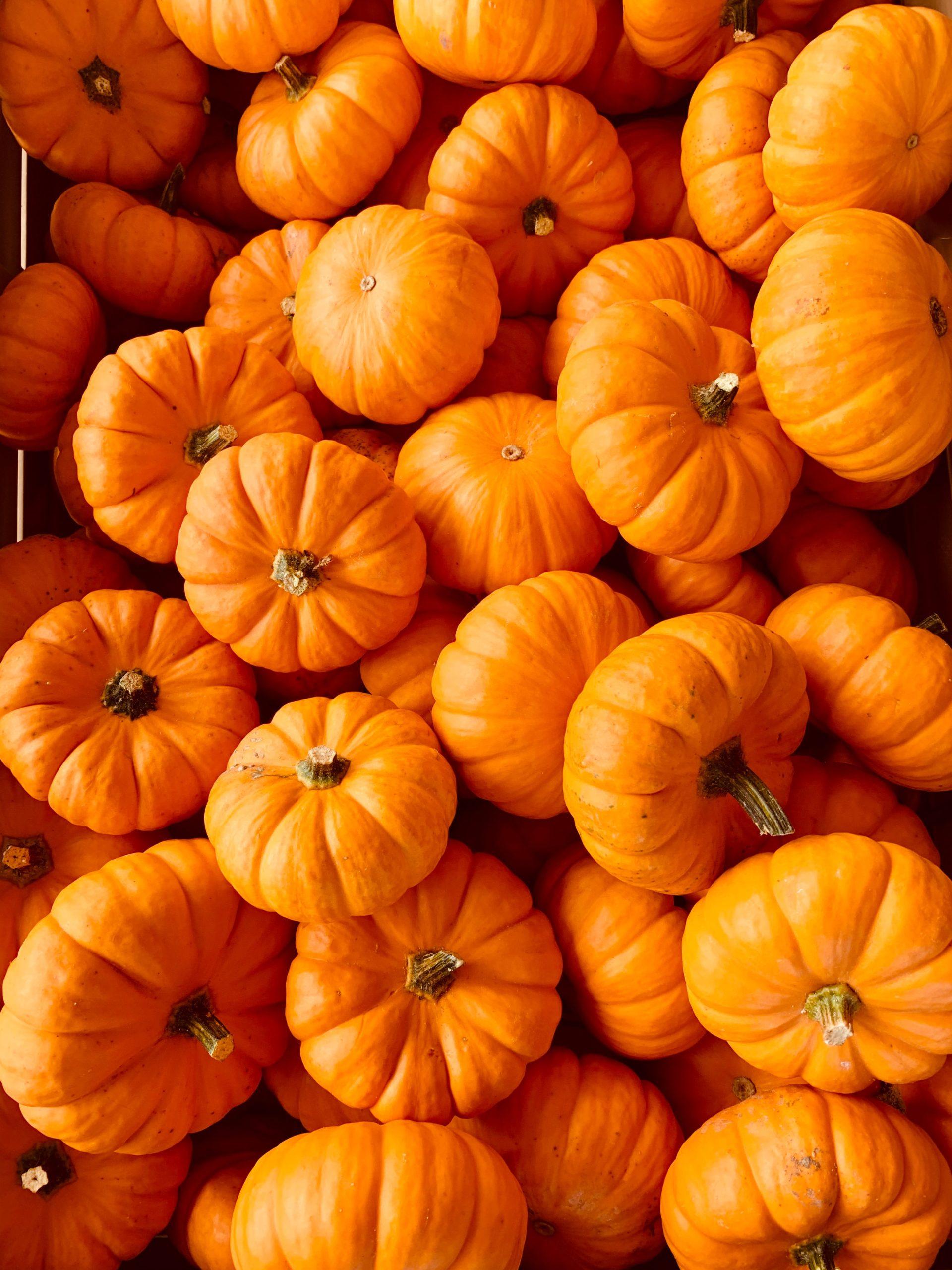 Un ''vrai'' chrétien peut-il fêter l'Halloween ?